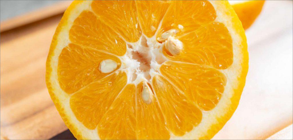 Watson pomelos orange picking (Hidakagawa Town)