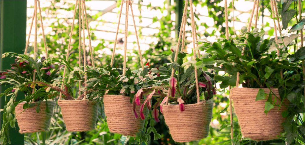 Greenhouse flower picking (statice flowers) (Gobo City)